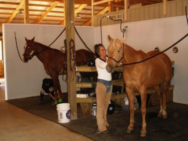 Tips For Building Horse Stalls And Barn Storage