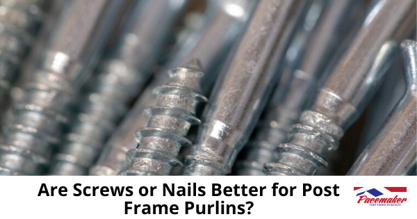 are-screws-or-nails-better-for-post-frame-purlins1